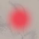 Malarian pelko/Paperi T