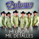 Mi Uno Y Mil Detalles/Palomo