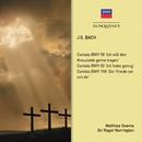 Bach: Cantatas/Matthias Goerne, Roger Norrington