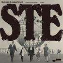 STE/Sunaga t experience