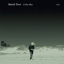 Only Sky/David Torn
