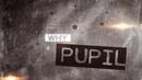 Why(Lyric Video)/Pupil