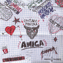 Amiga/Comisario Pantera