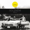 Souzneni/Mirai