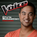 Firework (The Voice Performance)/Chris Sebastian
