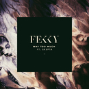 Way Too Much (feat. Skepta)/Fekky