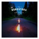 Diesel og bensin/Odd Nordstoga