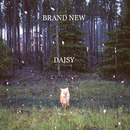 Daisy/Brand New
