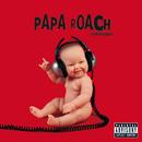 lovehatetragedy/Papa Roach