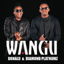 Wangu/Donald, Diamond Platnumz