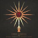 Nearly Forgot My Broken Heart/Chris Cornell