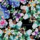 Labyrintens Farver/Fribytterdrømme