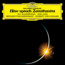 Strauss, R.: Also sprach Zarathustra; Till Eulenspiegel; Don Juan; Salome's Dance Of The Seven Veils/ヘルベルト・フォン・カラヤン