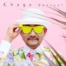 hurray!/Chage