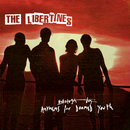 Anthems For Doomed Youth/The Libertines