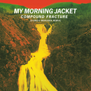 Compound Fracture (Giorgio Moroder & Roman Luth Remix)/My Morning Jacket