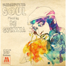 UNDISPUTED SOUL (mixed by DJ SPINNA)/DJ Spinna