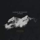 Yes/No/Grey (Deluxe)/Gangs Of Ballet