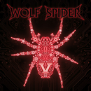 V/Wolf Spider