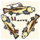 MARVY/RCサクセション
