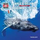 13: Wale & Delfine / Geheimnis Tiefsee/Was Ist Was