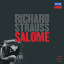 Strauss, R.: Salome/Catherine Malfitano, Bryn Terfel, Kenneth Riegel, Hanna Schwarz, Kim Begley, Wiener Philharmoniker, Christoph von Dohnányi