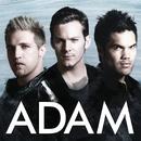 ADAM/ADAM