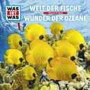 31: Welt der Fische / Wunder der Ozeane/Was Ist Was