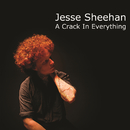 A Crack In Everything (EP)/Jesse Sheehan