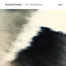 Into The Silence/Avishai Cohen