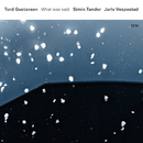 What Was Said/Tord Gustavsen, Simin Tander, Jarle Vespestad
