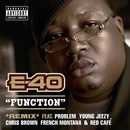 Function (Remix) [feat. Problem; Young Jeezy; Chris Brown; French Montana; Red Café]/E-40