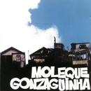 Moleque Gonzaguinha/Luiz Gonzaga Jr.