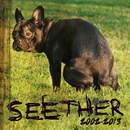 Seether: 2002-2013/Seether