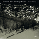 Birdwatching/Anat Fort Trio, Gianluigi Trovesi
