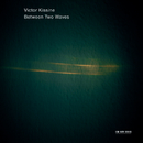 Between Two Waves/Victor Kissine