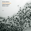 Stone In The Water/Stefano Bollani Trio