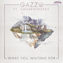What You Waiting For (feat. SUGARWHISKEY)/Gazzo