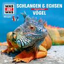 48: Schlangen & Echsen / Vögel/Was Ist Was