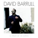 El Pirata De Tus Sueños/David Barrull