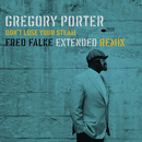 Don't Lose Your Steam (Fred Falke Extended Remix)/Gregory Porter