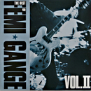 The Best Of Femi Gange Vol II/Femi Gange