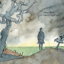 The Colour In Anything/James Blake