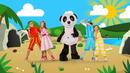 Homem Primitivo/Panda e Os Caricas