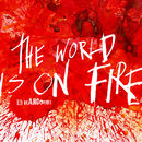 The World Is On Fire/Ed Harcourt