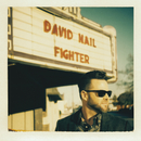 Fighter/David Nail
