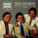 Grandes Êxitos/Trio Odemira