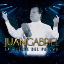 La Muerte Del Palomo/Juan Gabriel