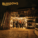 Blossoms/Blossoms