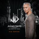 Am Ende des Tages (Die Remixe)/Julian David